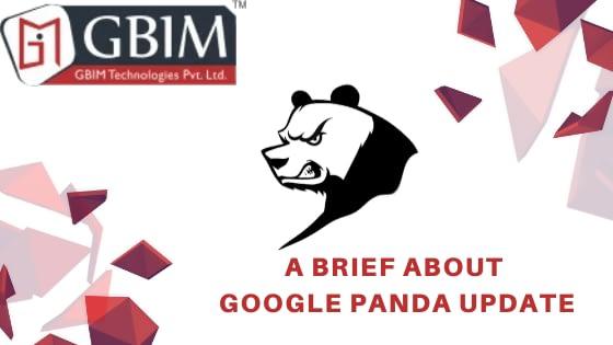 A Brief About Google Panda Update